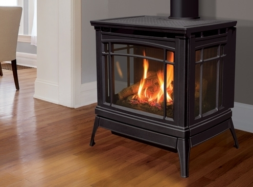 Enviro Berkeley Gas Freestanding Stove