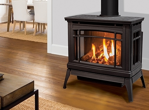 Enviro Westley Gas Freestanding Stove